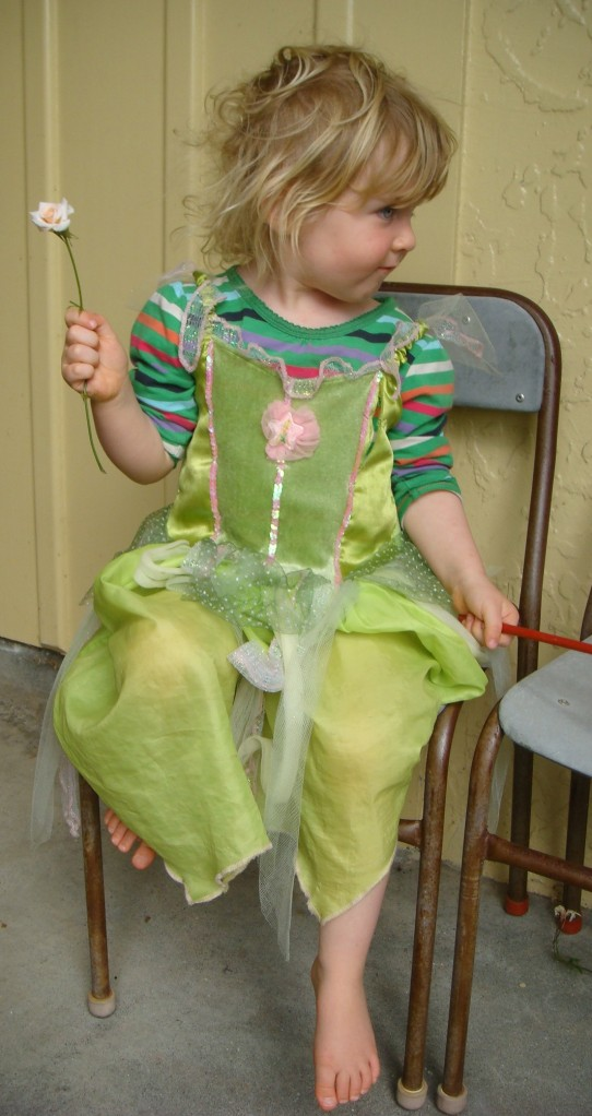 Hasn't every little girl dressed as a fairy?